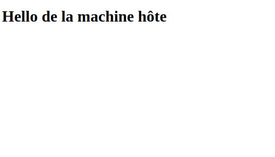 Notre fichier index.html est accessible dans le conteneur